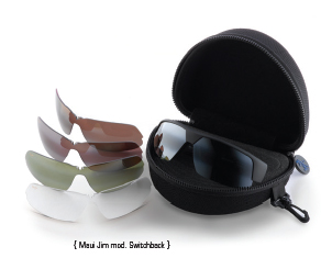 MauiJim_Switch